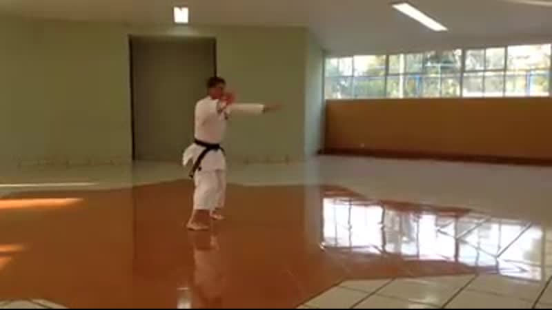 Kihon Ichi Uechi Ryu
