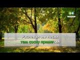 Клен ты мой опавший - Козин Вадим (karaoke.ru)