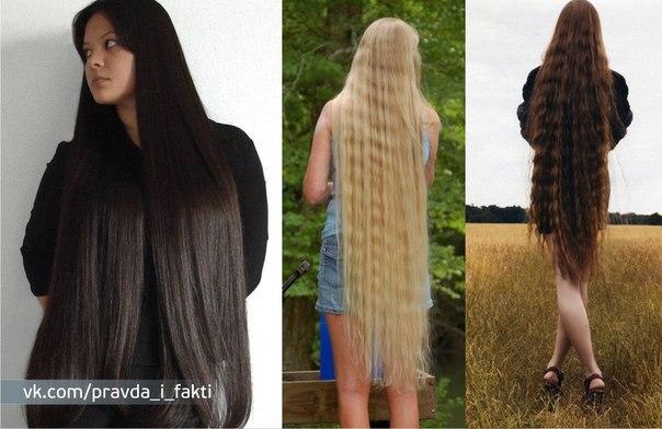 длинные волосы фото у девушек