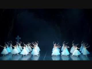 07.-18.11.2018 Teatro alla Scala (Ballet Company), on tour in Brisbane (Australia) - Giselle and Don Quixote