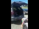 Открыть багажник