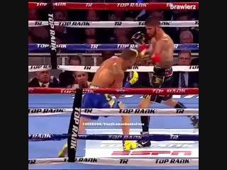 Когда Василий Ломаченко находится на другом уровне в боксе. 🥊