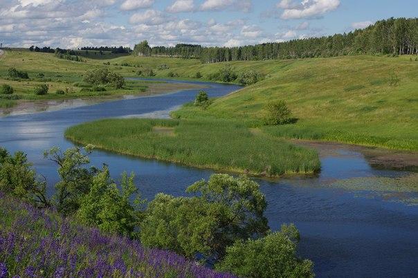 Река Осётр. Тульская область