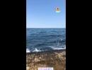 Миша Марвин   История Instagram   19.08.2018   marvin_misha