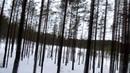 Лыжная стрела Орехово 2015 (18.01.2015)
