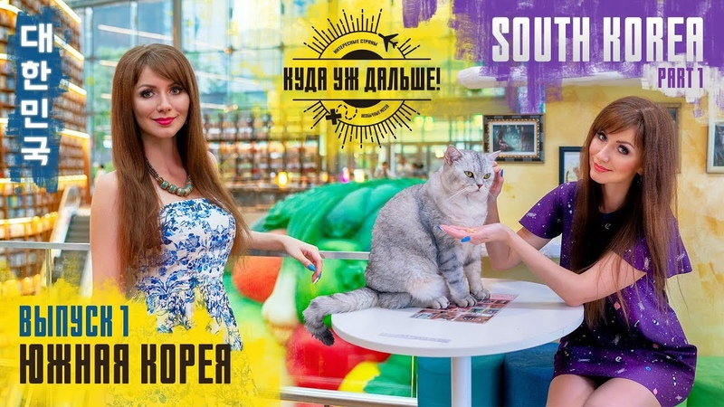 Travel to South Korea: Cat café, Starfield library. Куда уж дальше! Южная Корея. Выпуск 1.