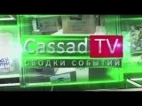 Информационный выпуск новостей Новороссии за 11 – 12 ноября