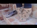 Ножки в нейлоновых носочках и балетки Ножки, Фетиш, Фут, Foot, Fetish, Чулки, Legs, Секси