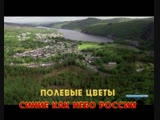 Иванов Александр и гр. Рондо - Цветы