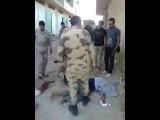 شاهد كيف يعذب الجيش المصرى اهل سيناء  +18