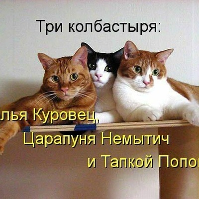 Варя Варвара, 28 января , Новомосковск, id165728178