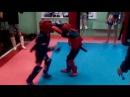 тайский бокс Первоуральск Киселев Давид 6 лет(синий), Воробьев Кирилл 7 лет(красн