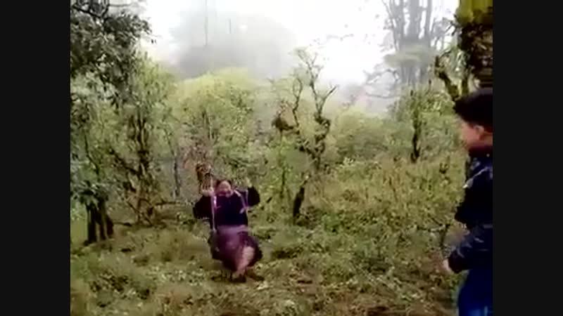 Бабуля ушла в пике