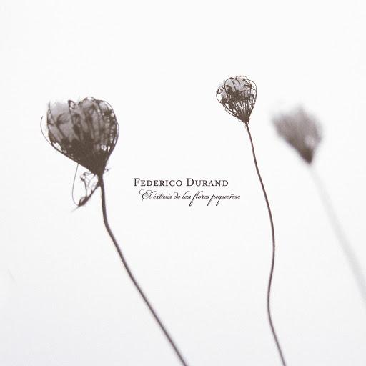 Federico Durand альбом El éxtasis de las flores pequeñas