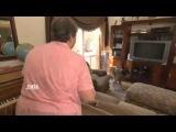 Переводчик с собачьего. 8 сезон - эпизод 10 часть 3 (DOG WHISPERER Season 8 EPI 10 part 3)