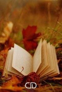 Отцвели цветы, падают листья, птицы молчат, лес пустеет и затихает.ОСЕНЬ. - Страница 6 MisSPa5Tjn4