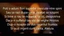 Andra Gogan - Aleluia (Versuri)