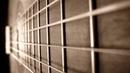 Agustín Barrios: Doce Estudios (Guitar: Philippe Lemaigre)