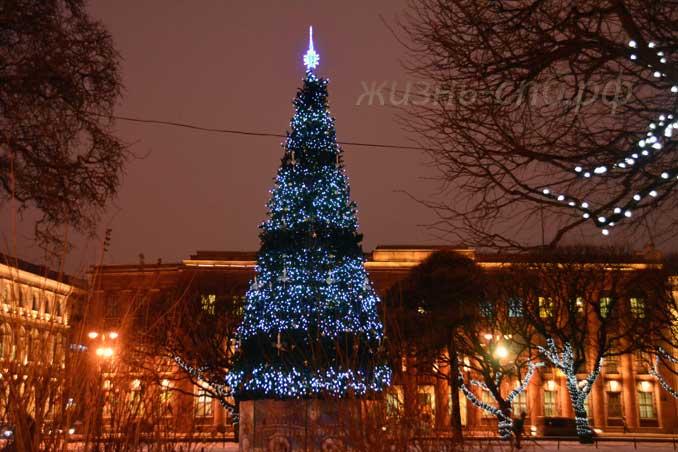 Новогодняя ёлка на фоне Министерства юстиции РФ по СПб.