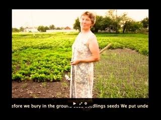 Правильная посадка семян секреты исцеления Ведрусов в огороде