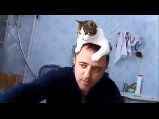 Без кота и жизнь не та😅