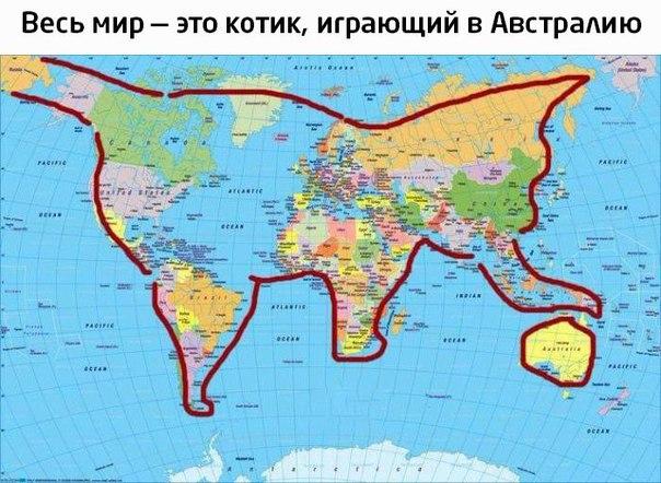 Субботний географический котик...