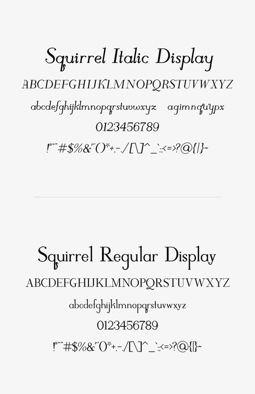 Download Squirrel COM font (typeface)