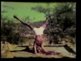 Кришнамачария - 1938 (5 of 5)