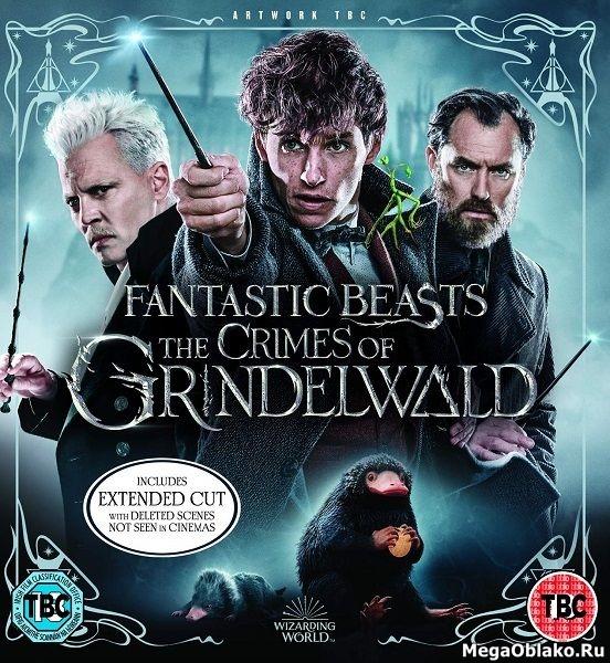 Фантастические твари: Преступления Грин-де-Вальда / Fantastic Beasts: The Crimes of Grindelwald (2018/WEB-DL/WEB-DLRip)