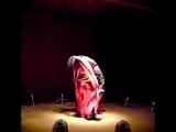 Па-де-де. Воздушная (12 вентиляторов) инсталляция бруклинского художника Дэниела Вурцела