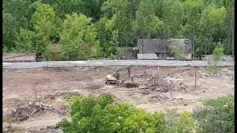 трактор закапывает остатки деревьев от 02.06.2018