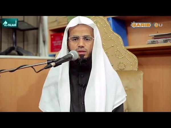 Сура «Аль-Муминун» | Шейх Абубакр аш-Шатри