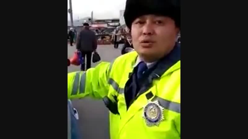 Покрывает полицейского трехэтажным матом