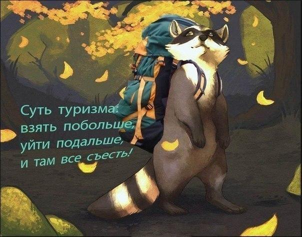 https://pp.vk.me/c7008/v7008408/3b1b9/Qij-DF1G5dA.jpg
