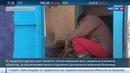 Новости на Россия 24 На грани вымерзания ТЭЦ Охи удалось запустить лишь с четвертой попытки