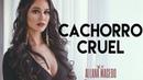 Allana Macedo - CACHORRO CRUEL - Clipe Oficial - IG: allanamacedo