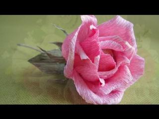 Роза из гофрированной бумаги с конфетой. Мастер класс.