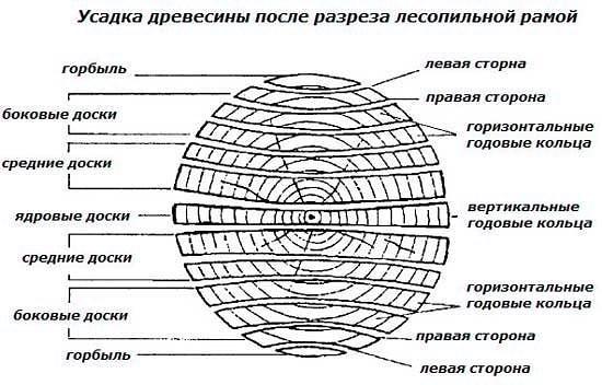 Деформация дерева и внутреннее напряжение дерева