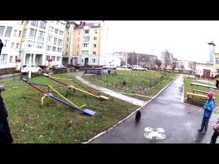 Кот ловит квадрокоптер, FUNny cat from SB69.PRO