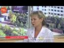 Прививка от клещевого энцефалита