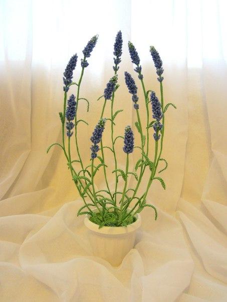 Цветы и деревья из бисера (Цена не указана) .
