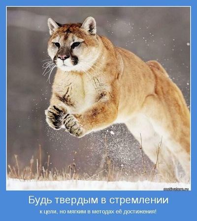 Ewggraff ;), 13 мая 1981, Стерлитамак, id87915823