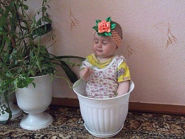 Цветочек ))