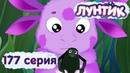 Лунтик и его друзья - 177 серия. Непослушные плавунцы