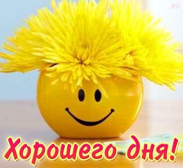 http://cs7050.vk.me/c7005/v7005782/13838/QS6pZV-OTKE.jpg