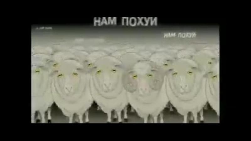 Этот гениальный шедевр посвящается электорату Путина. Относитесь с пониманием!