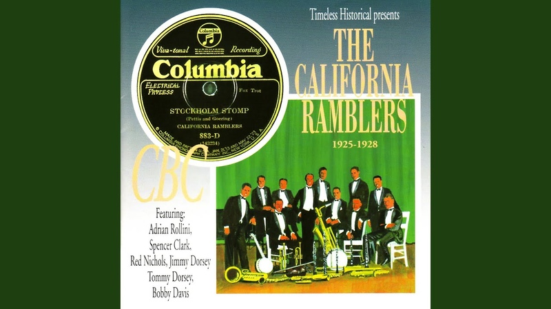 What Do You Say — The California Ramblers, 14.01.1928