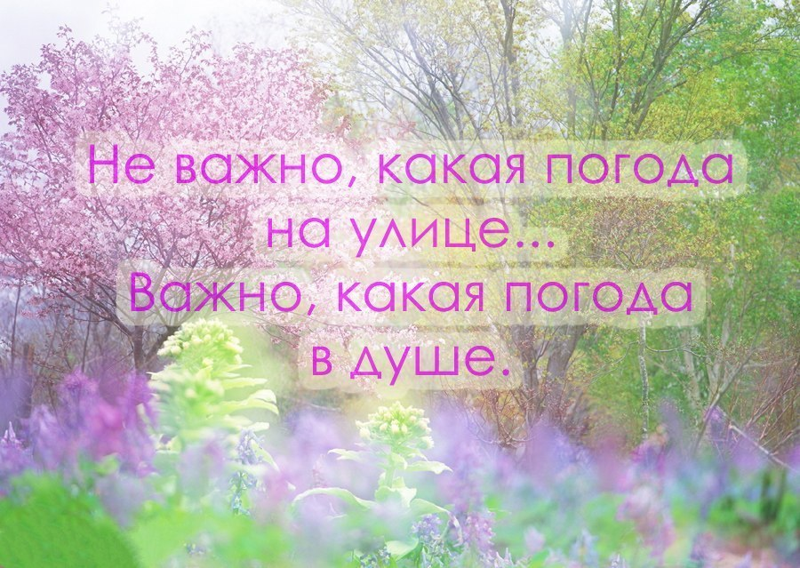 https://pp.vk.me/c319226/v319226580/a0ba/E11F4odYzN8.jpg