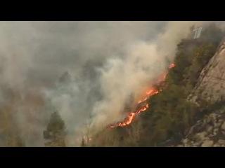 В Норвегии тысячи человек эвакуированы из-за сильного лесного пожара - Первый канал