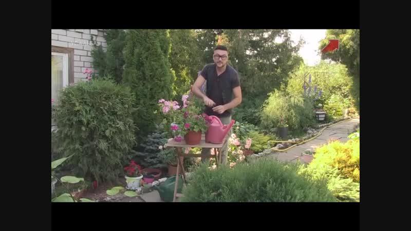 Фитоаптека 8 серия Марина Рыкалина и Виталий Декабрев Усадьба